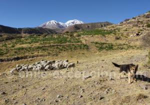 Sommets du Taapaca, versant sud