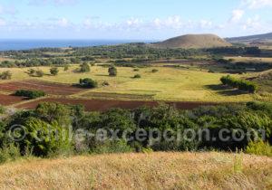 Panorama sur Rapanui