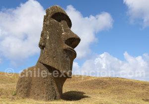 Que voir à l'île de Pâques