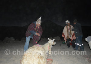Rituel de la Pachamama culture aymara
