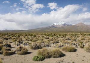 Isluga Cordillère Occidentale des Andes