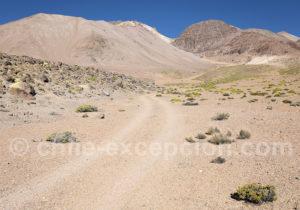 Versant nord du Nevado Taapaca