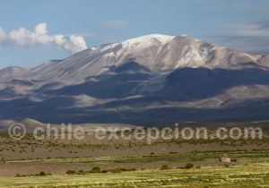 Volcan Isluga 5 550 mètres