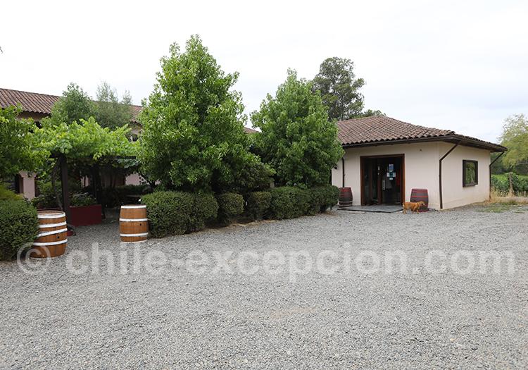 Viña Chillan, vallée Itata