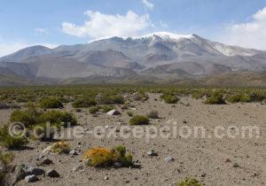 Volcan actif Isluga