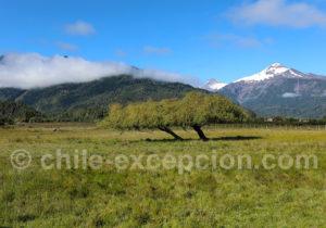 Mont Yate, Patagonie
