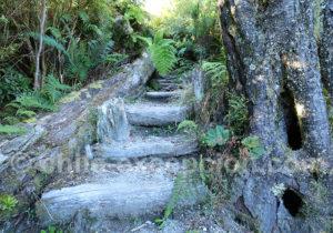 Sentier aménagé du volcan Chaiten