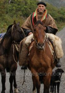 Gaucho de Patagonie