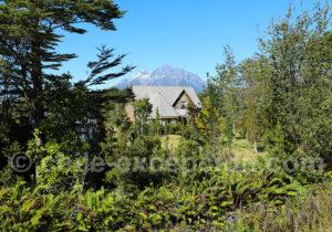 Oasis El Amarillo, Patagonie