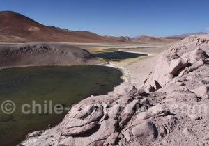 Le parc Nevado Tres Cruces avec chauffeur-guide