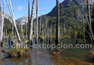 Parc Tagua-Tagua aire protegée privée