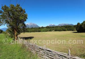 Région sud de El Amarillo, Chili