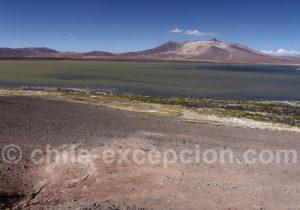 Parc national Nevado Tres Cruces
