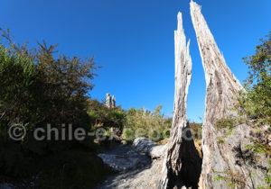 Trekking dans le sud du Chili