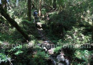 Tagua Tagua, parc privé de Patagonie