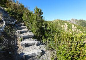 Nombreux escaliers sur le volcan Chaitén