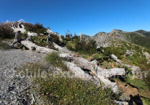 Dénivelé de 744 m ascension volcan Chaiten
