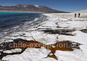 Rive de la lagune Verte, parc national Nevado Tres Cruces