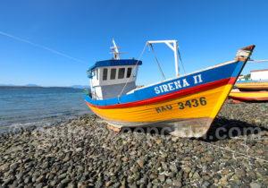 Pêche dans le Sud Chili