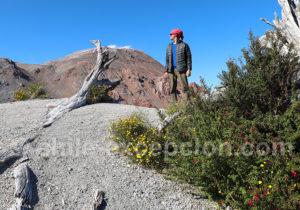 Fumeroles sur le dôme du volcan Chaiten