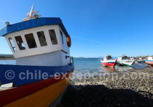 Atmosphère le la côte patagonne