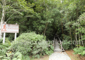 Sentier Cascadas à Caleta Gonzalo, parc Pumalin