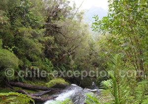 Ecotourisme au Chili