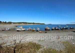 Voyage sur la côte en Patagonie