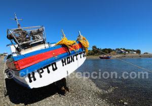 La pêche, principale activité de la région de Puerto Montt