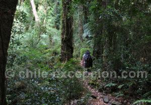 Randonnée parc Tagua Tagua
