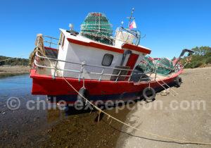 Heure de l'apéro pour les marins de Patagonie
