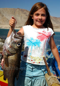 Prise de pêche au Pan de Azucar