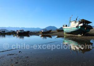 L'heure du repos pour les pêcheurs patagons