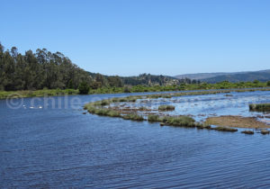 Laguna Torca, région del Maule