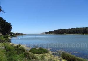 Laguna Torca, Vichuquén