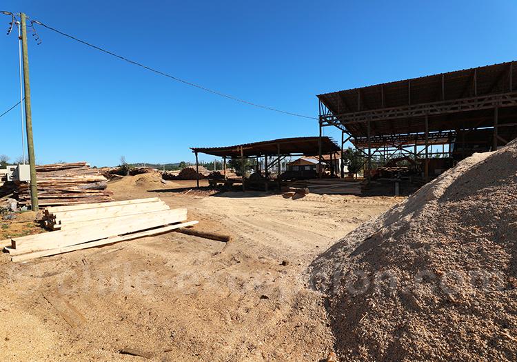 Industrie du bois au Chili