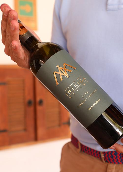 Production viticole au Chili